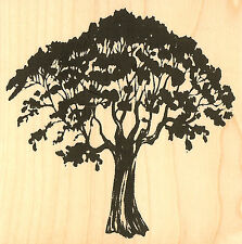 Tree Wood Mounted Rubber Stamp Impression Obsession Gail Green F7715 New