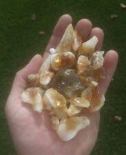 GemFarmer CITP: 1/2 Lb Lot Citrine Quartz Rough Crystal Points & Parts SP Chakra