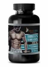Bulgarian Tribulus Terrestris 1000mg Testosterone Booster 1 Bottle 60 Tablets