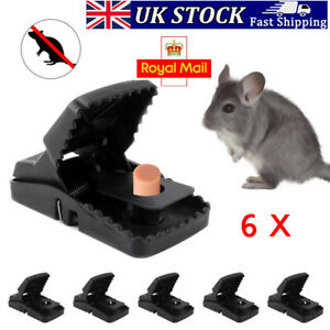 6X Heavy Duty aggressive Rat Trap self Setting The Rat Splatter Rats Catcher UK