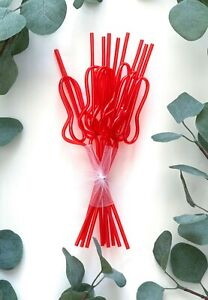 Bachelorette Party Penis Dick Drinking Straws Supplies Decorations Favors Swirly