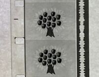 Advertising 16mm Film Reel - TREE TOP #4 Frozen (TT01)