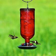 Bird Bottle Feeder Pet Hummingbird New 16 Oz Glass FREE SHIPPING