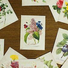 Nacoo's Kawaii Small Label Sticker Set ( 48 pcs in paper box ) - Flower
