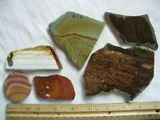 Lot of 6 - Picture/Landscape Jasper-Biggs/Deschutes/Owyhee? Slabs - 266 gr.