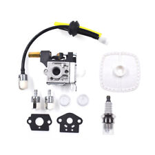 Carburetor Carb for Echo Hc150 Gt200 Pe-200 Srm210 Srm211 Pe201 Zama Rb-K75 Usa