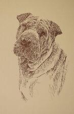 Chinese Shar Pei Dog Art Portrait Print #74 Kline will add dogs name free. Gift