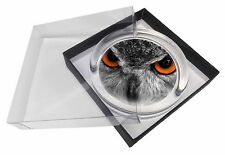 Grey Owl's Face Glass Paperweight in Gift Box Christmas Present, AB-O8PW