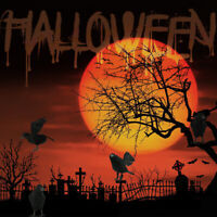 1/2/3/6x Halloween Corneille Faux Oiseau Jouets Ravens Déguisements Décor