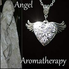 Essential Oil Diffuser Wing Heart Necklace Locket Aromatherapy US Seller