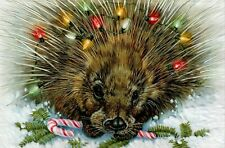 16 Embossed Boxed Christmas Cards Porcupine