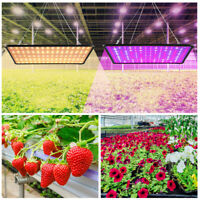 Home Plants Grow Light 256LED for Indoor Plant Growing Lamp Full Spectrum Lights