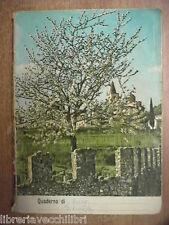 Vecchio quaderno scolastico usato di scuola Da collezione ITALIA BELLA Appennini