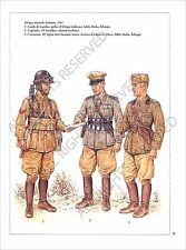 PLANCHE UNIFORM PRINT WWII Italy Army Forze armate italiane Italian Armed Forces