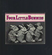 Four Little Bunnies Vintage Photos by Harry Whittier Frees
