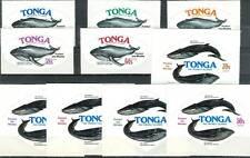 BALENE - WHALES TONGA 1977
