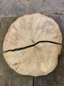 Baumscheibe, Holzscheibe,Tischplatte, Ahorn ca. 70x5cm, 2 Teile