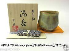 o5575,JPN,TETSUAKI NAKAO, the January Galaxy glaze teacup / class A work.