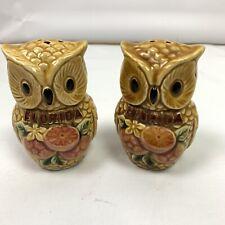 Vintage Brown Owl Florida Bird Salt Pepper Shakers Ceramic Souvenir