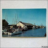 Lazio's Seafood Restaurant On Humboldt Day Eureka California Postcard (P600)