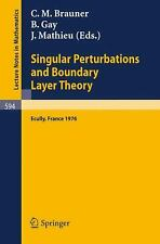 Singular Perturbations and Boundary Layer Theory : Ecully, France 1976