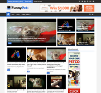 Fully Automated Pets Video Website