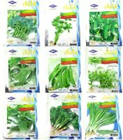 ChiaTai Vegetable Garden Seeds Pure Natural Organic Wholesale Plant Quality #1