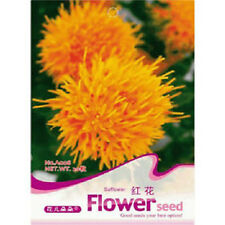 FD1225 Chinese medicine Saffron Flower Seeds ~1 Pack 40 Seeds~ Free Shipping A