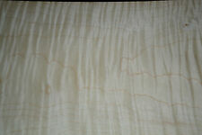 Tiger Maple Raw Wood Veneer Sheets, 9.25 x 44 inches 1/42nd thick  b7839-5