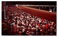 Batavia Downs Race Track, Batavia, NY Postcard