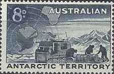 Timbre Antarctique Australie 3 ** lot 25570