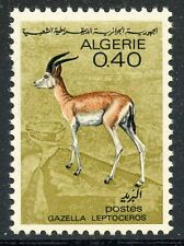 STAMP / TIMBRE ALGERIE NEUF N° 449 **  FAUNE SAHARIENNE