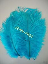 "10 TURQUOISE OSTRICH FEATHERS 10-12""L"