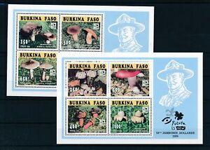 [G28089] Burkina Faso 1995 mushrooms two good sheets very fine MNH