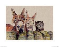 Jane Bannon (Johnny, Freckles & Halfpint) Art Print PPR43579 Size  40 x 50cm