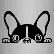 French Bulldog Peeking Car Decal Frenchie Vinyl Dog Sticker 155mm x 100mm
