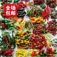 200PCS Mix of Hot Red Green Yellow Pepper Pot Chili Peppers Seed Seeds Capsicum