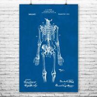 Poster Human Skeleton 32x44cm