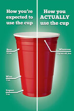 RED CUP - DIAGRAM POSTER - 24x36 FUNNY DRINKING COLLEGE SCHOOL BEER 10425