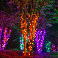 70 Purple Orange Green Halloween String Lights LED Home Holiday Party Decor 24ft