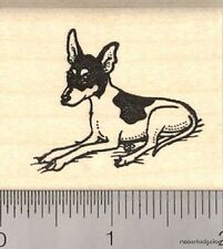 Toy Fox Terrier Rubber Stamp G12117 WM dog, small, cute
