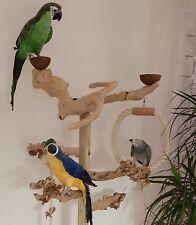 PAPAGEIEN FREISITZ aus Holz JAVA Wurzelholz Papageienspielzeug Kletterbaum *NEU*
