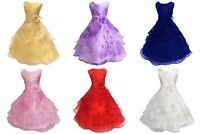 Girls Flower Embroidered Dress Layered Formal Wedding Party Bridesmaid Prom Ball