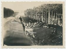 Foto Russland-Feldzug -Auf Transport- Kw.Trsp.Rgt.615   (B970)
