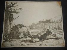 1656 ACQUAFORTE INCISORE OLANDESE KAREL DUJARDIN SCENA AGRESTE CON ANIMALI