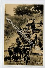 (Ga1051-450) Real Photo of South African Ox Carriage c1910 EX