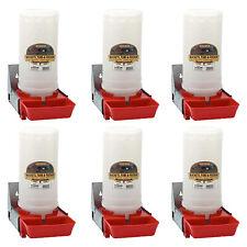 Little Giant 1 Gallon Impact Translucent Polyethylene Piglet Waterer 6 Pack