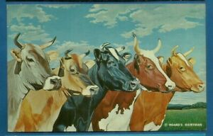 5 queens/ Brown Swiss, Jersey, Holstein, Aynshire and Guernsey cows/chrome pc