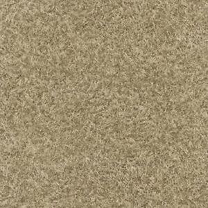 514322 - Foresta Nera Wallpaper castano chiaro foresta muschio (F4M)