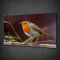 BEAUTIFUL ROBIN BIRD MODERN CANVAS WALL ART PRINT PICTURE READY TO HANG